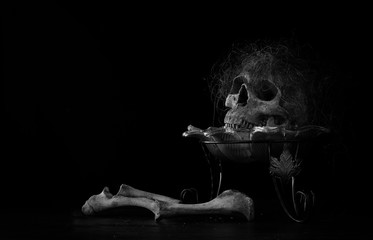 Skull which has hairline on pile of bone in the tray on dark background and wooden floor in dim light room