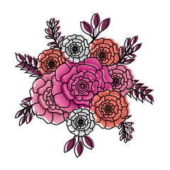 bunch flowers carnation leaves oranement vector illustration