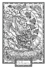 Zodiac sign Cancer with rose flowers, waves and lucky numbers. Hand drawn fantasy graphic vector illustration in frame. Black and white doodle mystic drawing with engraved horoscope symbol