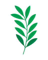 green branch leaves nature foliage vector illustration