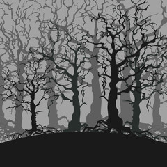 cartoon gloomy forest background of trees without leaves