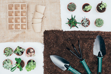 top view of green potted plants, empty pots, soil and gardening tools on grey