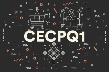 Conceptual business illustration with the words cecpq1