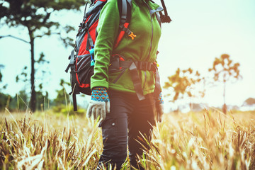 Asian women travel  nature. Travel relax.Backpack walk on the meadow in the forest. Thailand