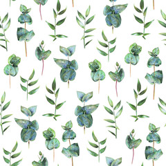 Seamless floral pattern with green eucalyptus and leaves of ruscus on white. Spring flowers. Botanical natural background drawn by hand with colored pencil