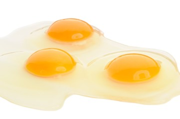 Egg Yolks and Whites on White Background