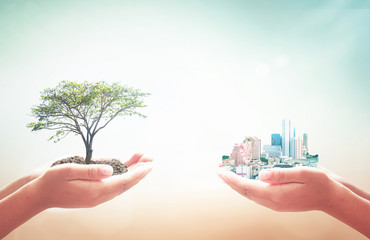 Community sharing concept: Two human hands holding big tree and city over blurred nature background