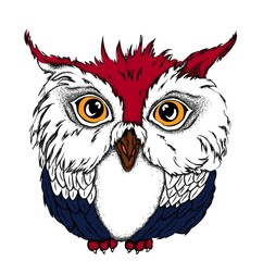 Portrait of a Owl. Can be used for printing on T-shirts, flyers and stuff. Vector illustration