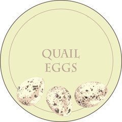 Variegated quail eggs in pastel shades. Little eggs for Easter