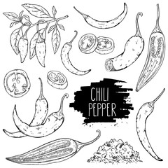 Hand drawn hot chili pepper set. Peppers chili, slices, halves, crushed pieces and branch isolated on white background. Outline ink slyle sketch. Vector coloring illustration.