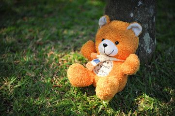 Cute little bear waiting for the owner to take back home.