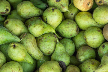 Heap of Ripe Organic Green Pears in Wooden Box at Farmers Market. Bright Vibrant Colors. Vitamins Superfoods Healthy Diet Harvest Concept. Sunlight Summer Mood. Close up