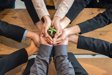 A group of people holding to support the little tree by hands. The conceptual of egology and save the world. A comparative approach to business progress.