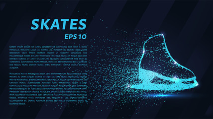Skates of particles. Skates consists of circles and points