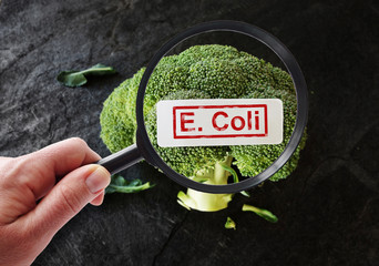 E Coli contamination Wall mural