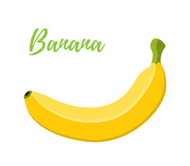 Vector illustration of banana, tropical yellow fruit. Cartoon flat style