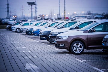 Many new cars parked in a row, ready for export