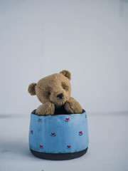 cute Teddy bear toy sitting in a mug