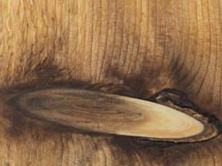 Cedar plank with a knot 5