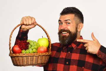 Man with beard holds basket with fruit on white background