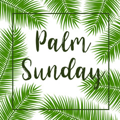Green Palm leafs vector square frame. Vector illustration for the Christian holiday. Palm Sunday text handwritten font.