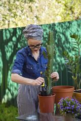 Woman planting cactus