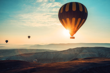 Photo sur Aluminium Montgolfière / Dirigeable Hot air balloons flying over the valley at Cappadocia.