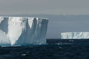 Tabular iceberg and birds, Antarctica.