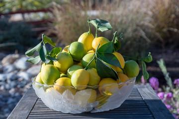 Lemon Display garden lemons on plate