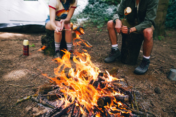 Hikers roasting marshmallows in a campfire.