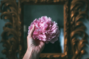 hand holding a peony bloom in front of a mirror in the evening