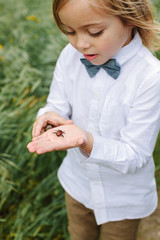 Boy wearing bowtie holds a bug in his palm hand
