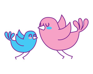 beautiful flying birds lovely animal vector illustration pink and blue design