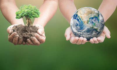 World environment day concept: Two human hand holding earth globe and big tree. Elements of this image furnished by NASA