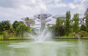 Сингапур. Гигантские деревья у залива.Футуристические сады Сингапура.