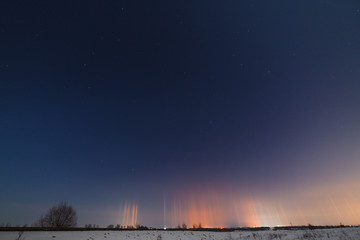 Multicolored radiance in the atmosphere. A natural phenomenon in the night sky over the forest.