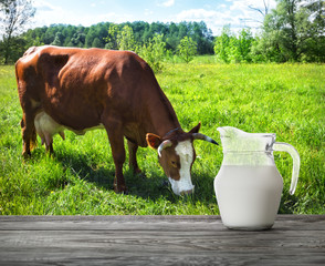 Jug of milk on wooden table with cow tweaking the grass