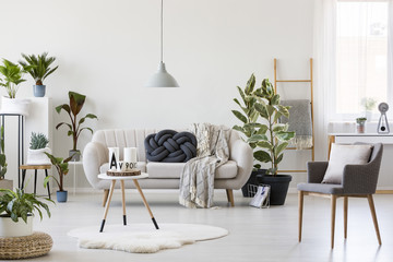 Bright living room with plants
