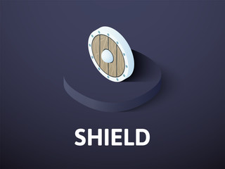 Shield isometric icon, isolated on color background
