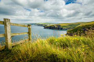 Der Coastal Path in Cornwall bei Port Isaac