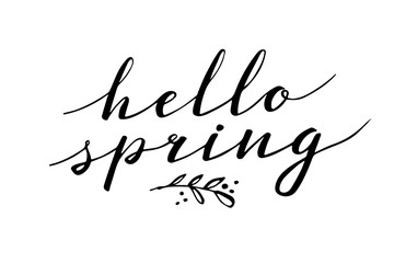 Hello Spring. Hand drawn calligraphy and brush pen lettering. design for holiday greeting and seasonal spring holiday card. White background