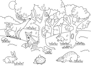 Cartoon forest coloring vector illustration