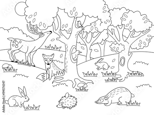 "black and white forest animals coloring pages | ""Cartoon forest coloring vector illustration"" Stock image ..."
