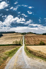 Tuscany: the road to Torre a Castello