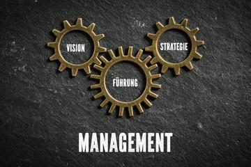 Management als Zusammenspiel aus Vision, Strategie und Führung