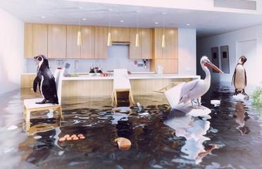 birds in the flooding kitchen
