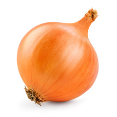 Onion isolated. Onion bulb on white background. With clipping path. Full depth of field.