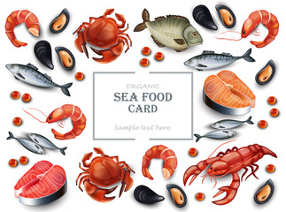 Seafood cancer and mussels Vector realistic pattern backgrounds