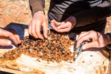 Foto op Canvas Oceanië Garnet Gemstone