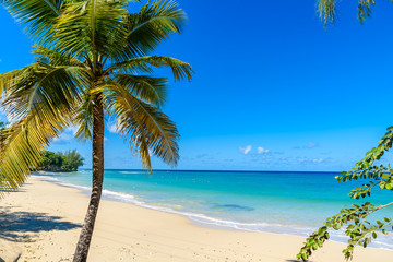 Mullins Beach - tropical beach on the Caribbean island of Barbados. It is a paradise destination with a white sand beach and turquoiuse sea.
